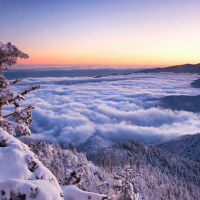 Mount LeConte Winter