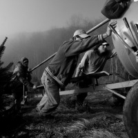 Pushing the Christmas Tree Bailer (Tommy Penick)
