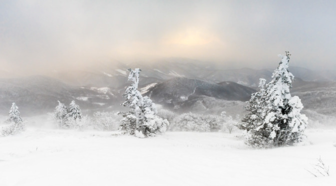 15 AMPC Finalist Photos of Breathtaking Winter Scenery